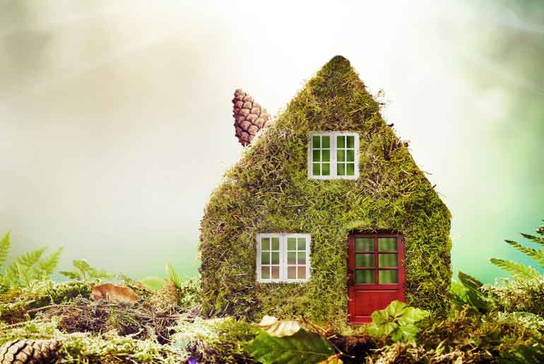 Toy house covered in moss